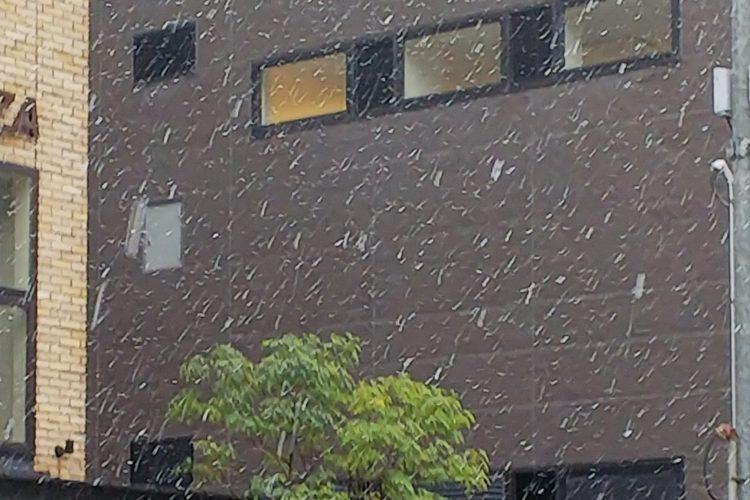 雪❄️‼️
